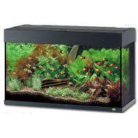 Akvarium  JUWEL Rio LED 125