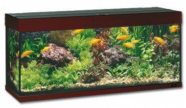 Akvarium  JUWEL Rio LED 240