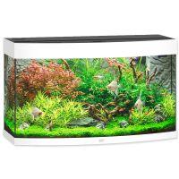Akvarium  JUWEL Vision LED 180