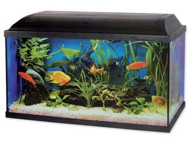 Akvárium set CAT-GATO 80 x 30 x 40 cm 96 l
