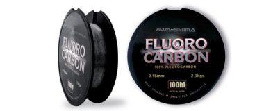 Awa-Shima Fluorocarbon 100m