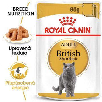 Royal Canin British Shorthair Gravy kapsička pro britské krátkosrsté kočky ve šťávě 12x