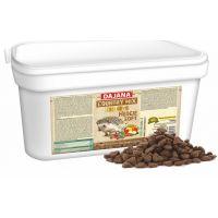 Dajana – COUNTRY MIX EXCLUSIVE, ježek 1500 g, krmivo pro ježky
