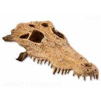 Dekorace Exo Terra krokodýlí lebka (1ks)