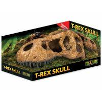 Dekorace EXO TERRA T-Rex lebka (1ks)