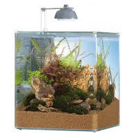EHEIM Nano akvárium Aquastyle 35 l