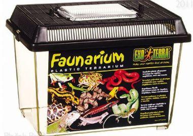 Faunarium malé