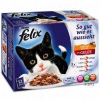 FELIX kapsa So Gut 12ks/100g Masový výběr