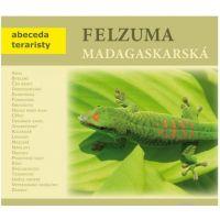 FELSUMA MADAGASKARSKÁ