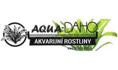 Aqua Daho