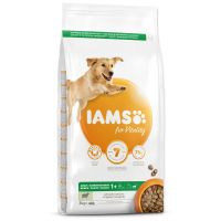 IAMS Dog Adult Large Lamb (3kg)