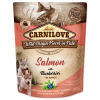Kapsička CARNILOVE Puppy Paté Salmon with Blueberries 300g