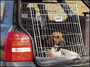Klec Dog Residence mobil 91 x 61 x 71 cm