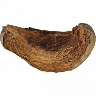 Kokosová slupka