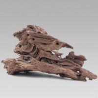 Kořen Driftwood XXL 60 - 80 cm