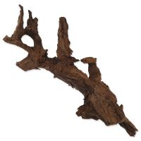 Kořen Mopani XXL /  55 cm a více