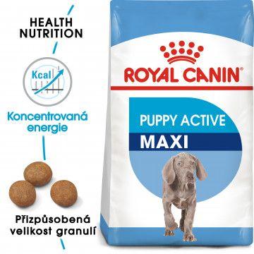Royal Canin Maxi Puppy Active granule pro velká aktivní štěňata 15kg