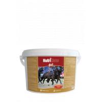 Nutri Horse Gel 1 kg