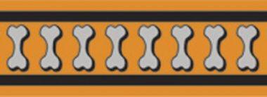Obojek RD 12 mm x 20-32 cm - Bones Rfx - Oranžová