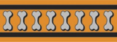 Obojek RD 20 mm x 30-47 cm - Bones Rfx - Oranžová