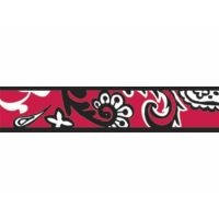 Obojek RD 25 mm x 41-63 cm - Bandana Red