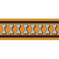 Obojek RD 25 mm x 41-63 cm - Bones Rfx - Oranžová