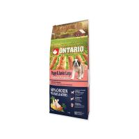 ONTARIO Puppy & Junior Large Chicken & Potatoes & Herbs 12  kg