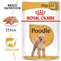 ROYAL CANIN Poodle Loaf kapsička s paštikou pro pudla 12x