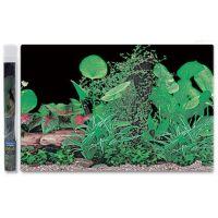 Pozadí ráj rostlin č.1 100 x 50 cm