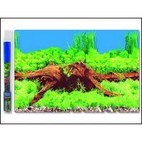Pozadí AQUA EXCELLENT tapeta kořen 30 cm výška / 1 m délka