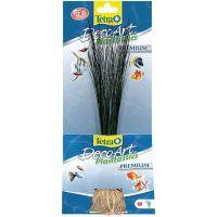 Rostlina Hairgrass M 24 cm
