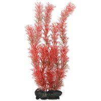 Rostlina TETRA Foxtail Red L (1ks)