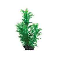 Rostlina TETRA Green Cabomba S (1ks)