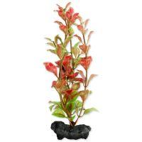 Rostlina TETRA Red Ludwigia S (1ks)