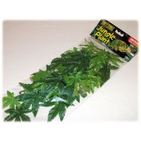 Rostlina textilní Abuliton střední 42 cm