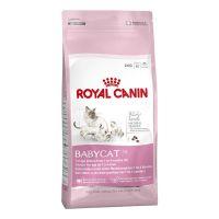 Royal Canin Babycat 400 g