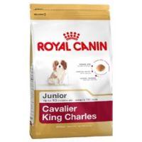Royal Canin KAVALÍR KING CHARLES Junior 500 g