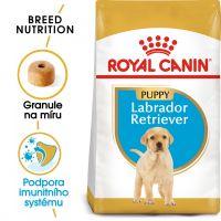 Royal Canin Labrador Puppy granule pro štěně labradora 12kg