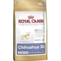 Royal Canin MINI ČIVAVA JUNIOR 500 g