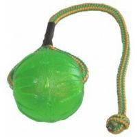 Swing and Fling Chew ball