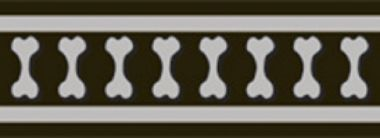 Vodítko RD 25 mm x 1,8 m - Bones Rfx - Černá