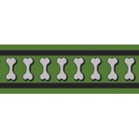 Vodítko RD 25 mm x 1,8 m - Bones Rfx - Zelená