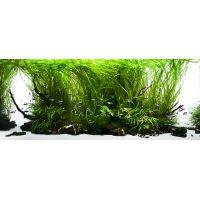 Yokuchi startovací balíček pro akvaria s výživou do dna pro rostliny