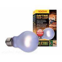 Žárovka EXO TERRA Daytime Heat  Lamp (100W) /2111