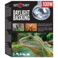Žárovka REPTI PLANET Daylight Basking Spot (100W)