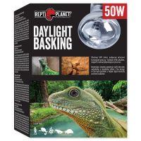 Žárovka REPTI PLANET Daylight Basking Spot (50W)