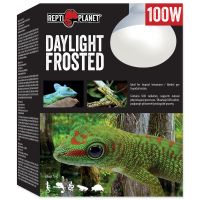 Žárovka REPTI PLANET Daylight Frosted (100W)