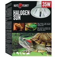 Žárovka REPTI PLANET Halogen Sun (35W)