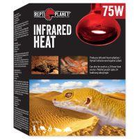 Žárovka REPTI PLANET Infrared HEAT (75W)